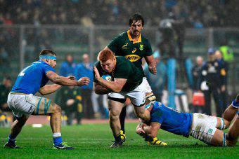 italia sudafrica rugby