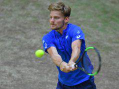 goffin-atp-tennis