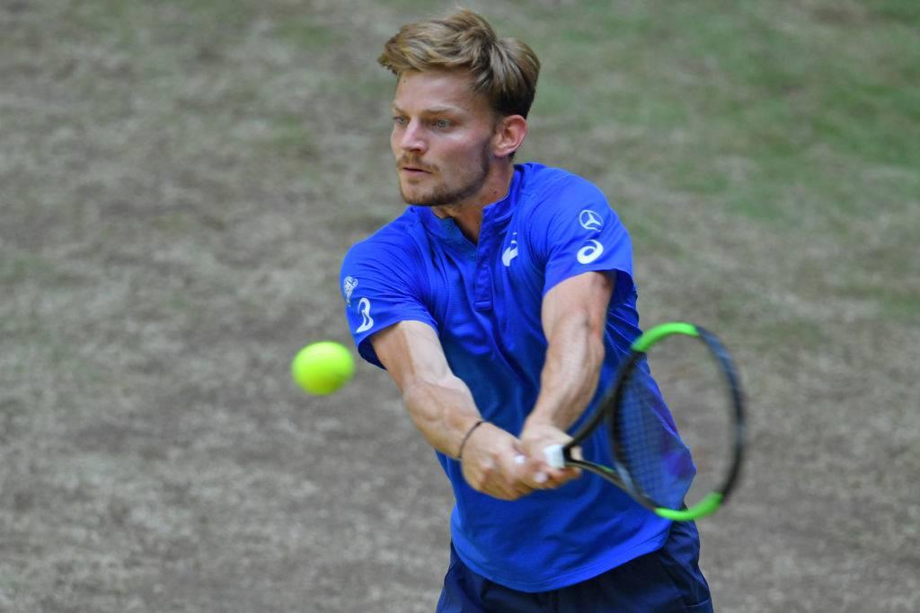 goffin-atp-tennis